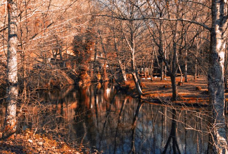 parque natural del rio barosa