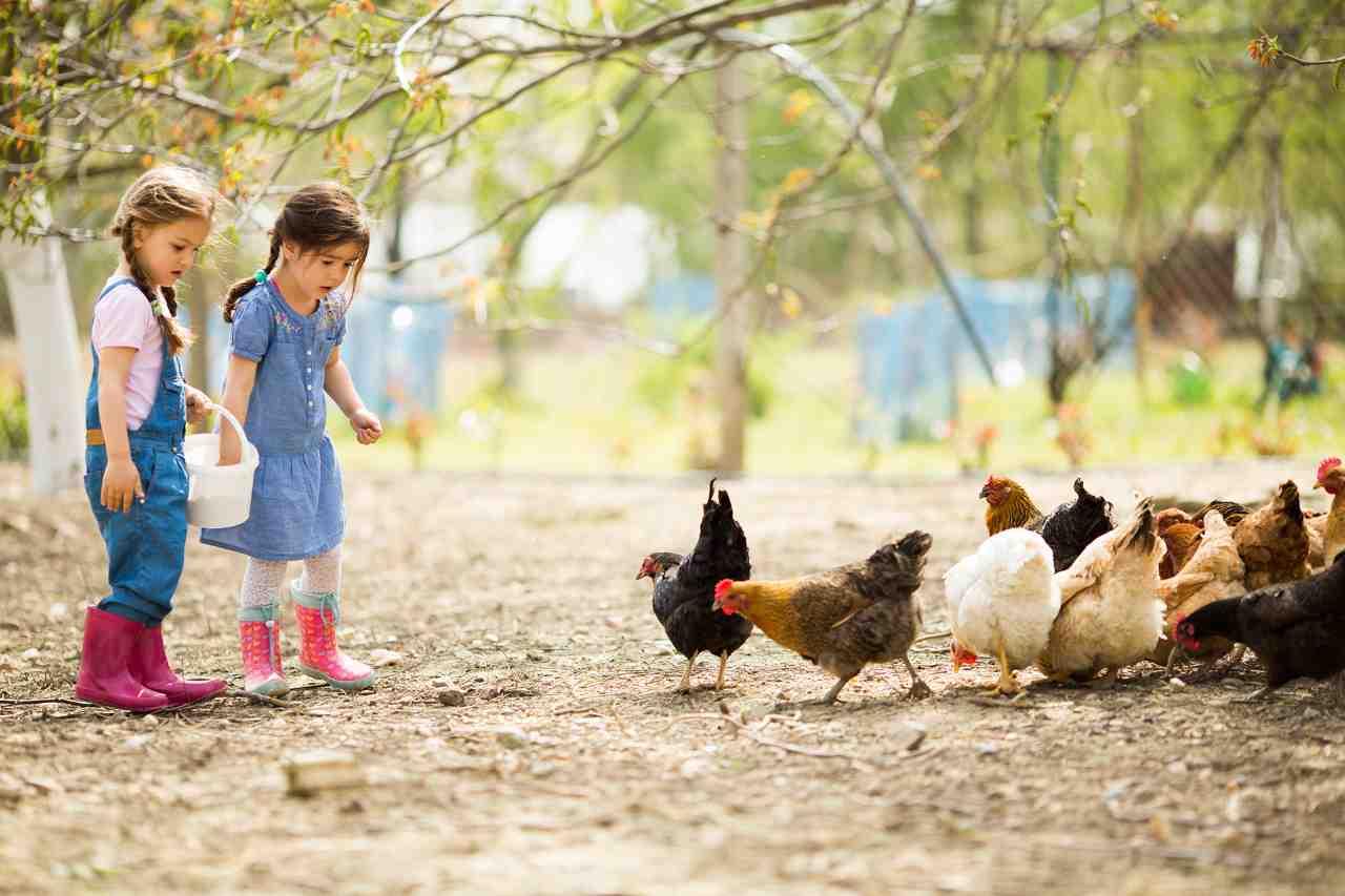 granjas escuela en galicia