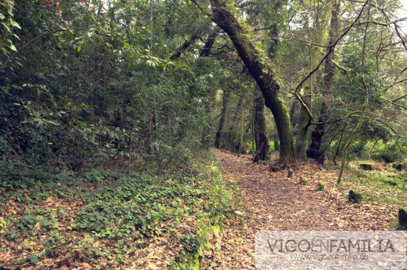 finca del frendoal el bosque encantado de aldan