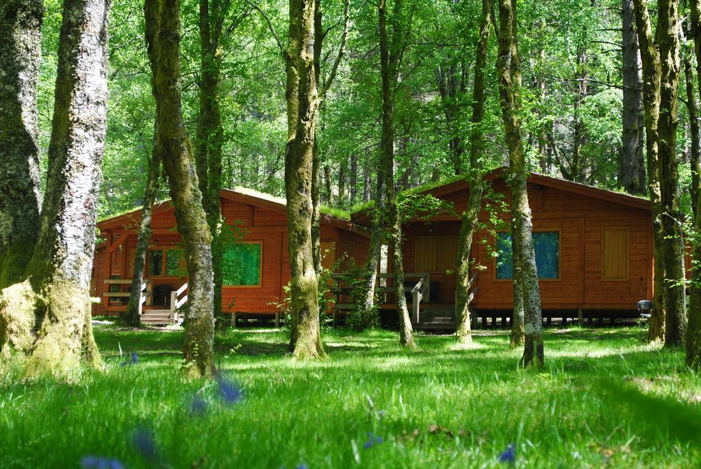bungalows da peneda