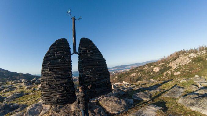 los pulmones de chandebrito