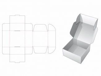 Descarga esta plantilla para crear una caja simple